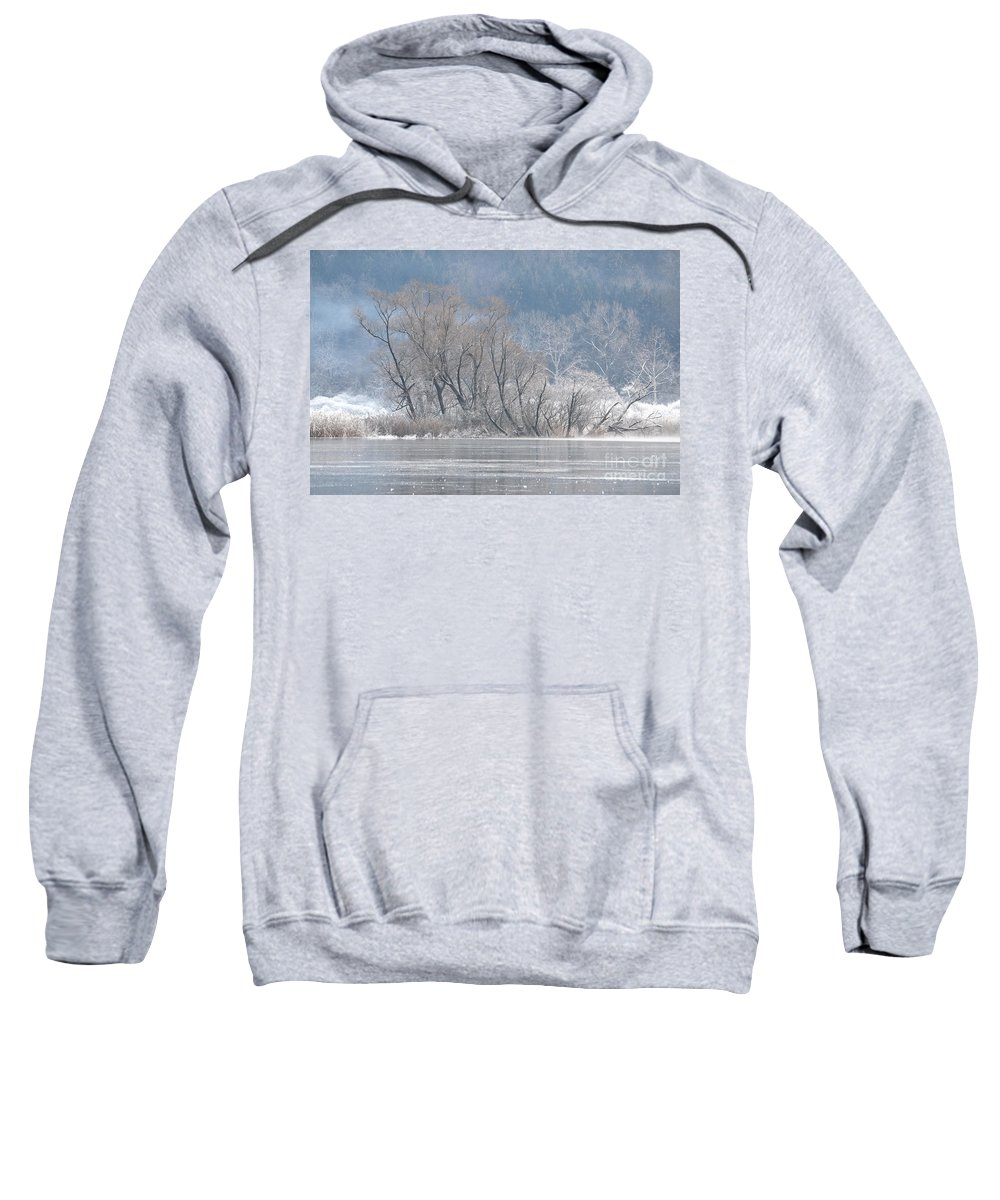 Ice Sweatshirt featuring the photograph Trees On A Frozen Lake by Mats Silvan