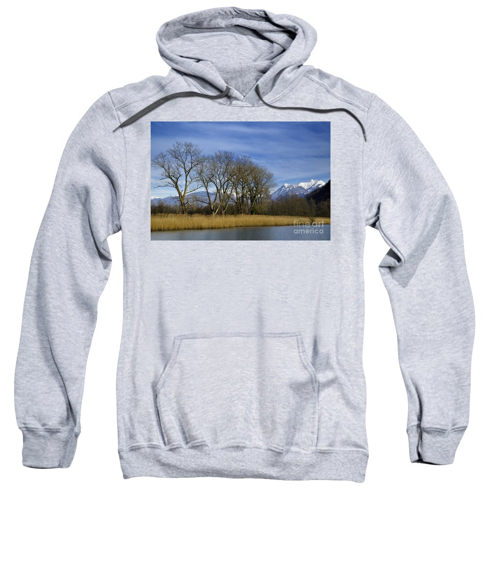Tree Sweatshirt featuring the photograph Trees On The Lakefront by Mats Silvan