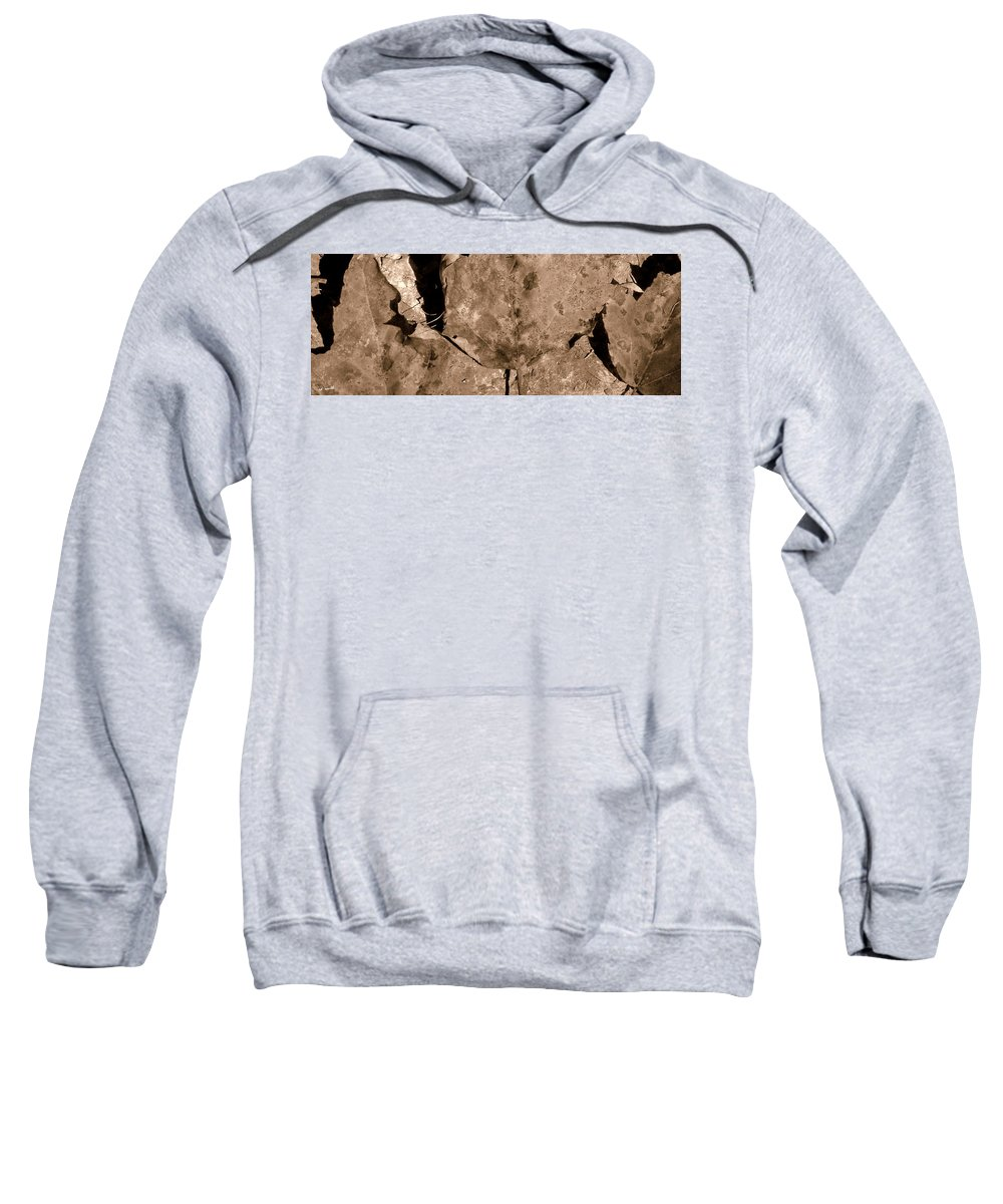 Trio Sweatshirt featuring the photograph Trio by Ed Smith