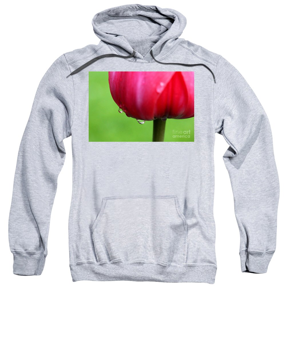 Tulip Sweatshirt featuring the photograph Tulipa by Mark Ashkenazi