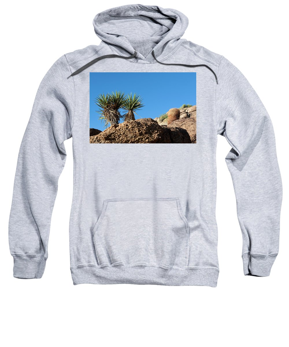 Gold Butte Region Sweatshirt featuring the photograph Two Bunch Gold Butte by Lorraine Devon Wilke