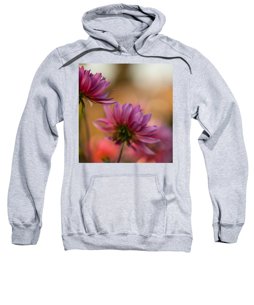 Dahlia Sweatshirt featuring the photograph Two Towards The Light by Mike Reid
