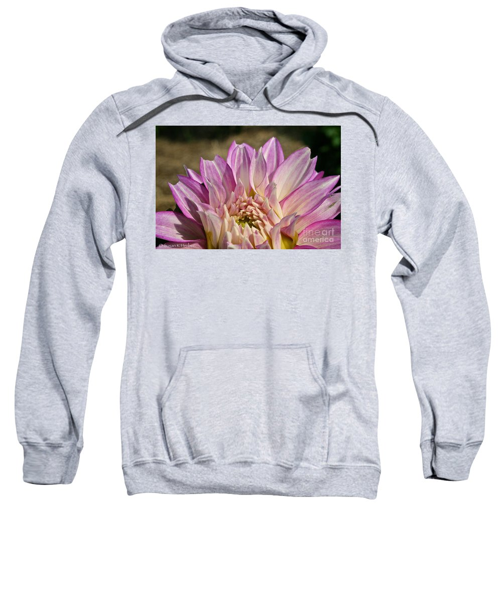 Outdoors Sweatshirt featuring the photograph Unnamed Dahlia 3002 by Susan Herber