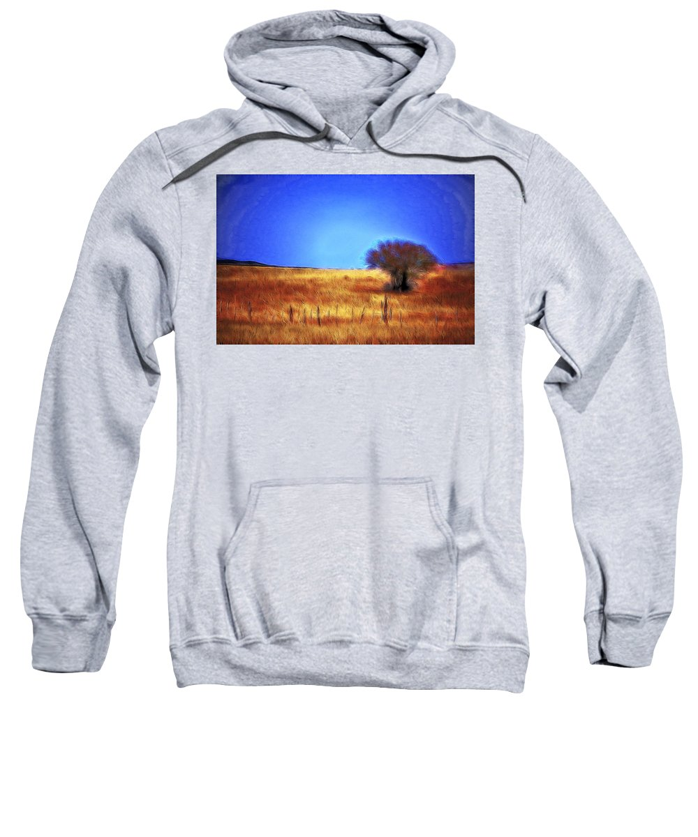 Fine Art Sweatshirt featuring the photograph Valley San Carlos Arizona by Donna Greene