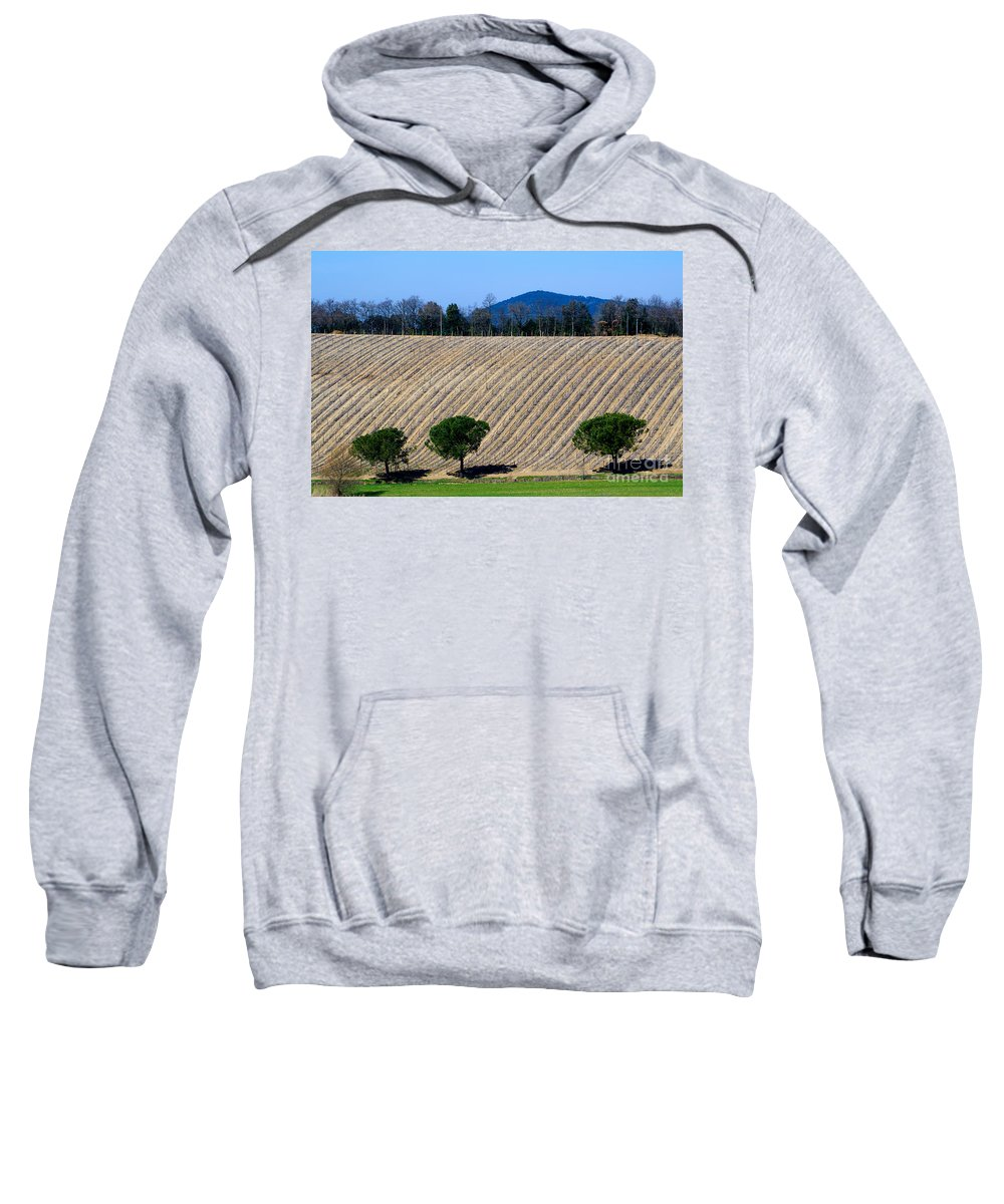 Vineyard Sweatshirt featuring the photograph Vineyard On A Hill With Trees by Mats Silvan