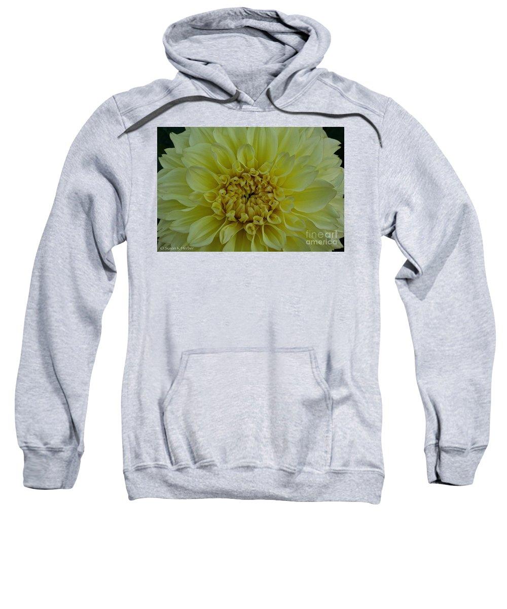 Landscape Sweatshirt featuring the photograph Vivid Yellow Dahlia by Susan Herber