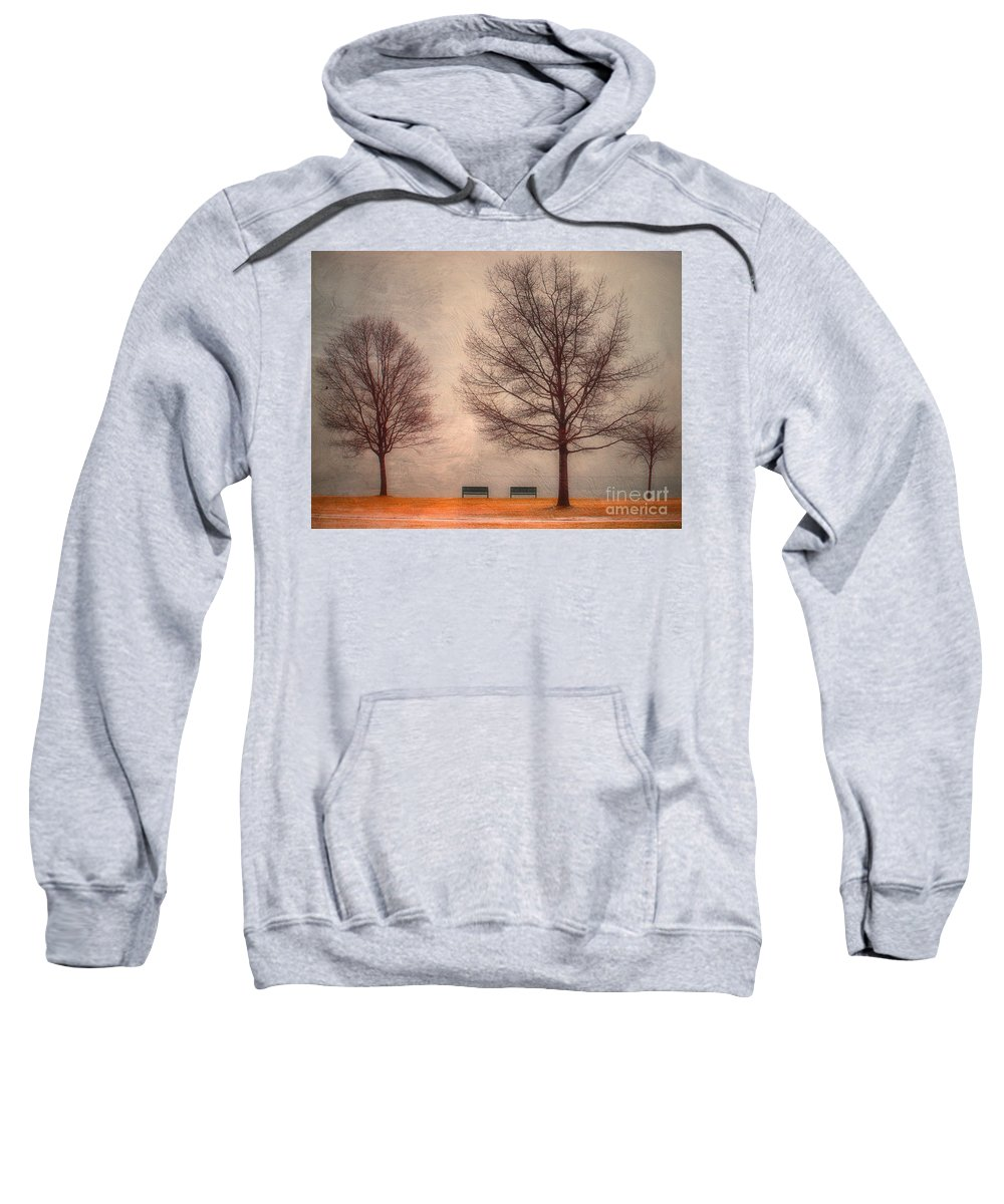 Texture Sweatshirt featuring the photograph Waiting For Winter by Tara Turner