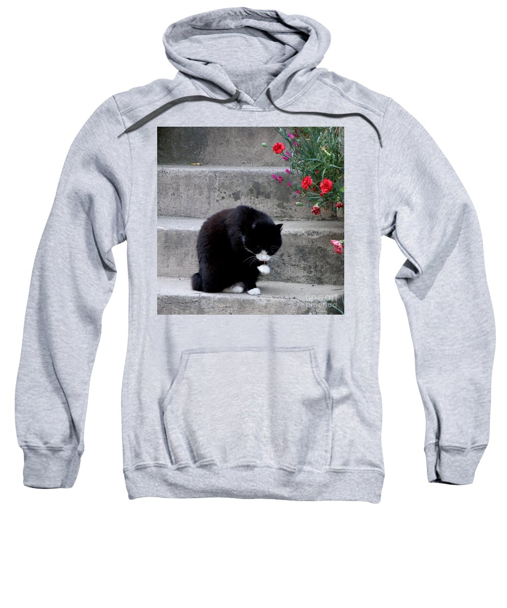 Cat Sweatshirt featuring the photograph Washing Up by Lainie Wrightson