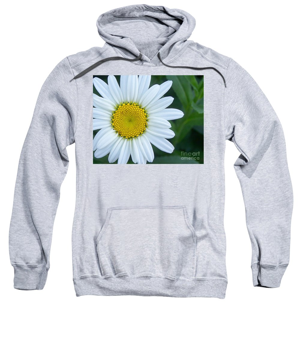 Flowers Sweatshirt featuring the photograph White Daisy by Jack Schultz