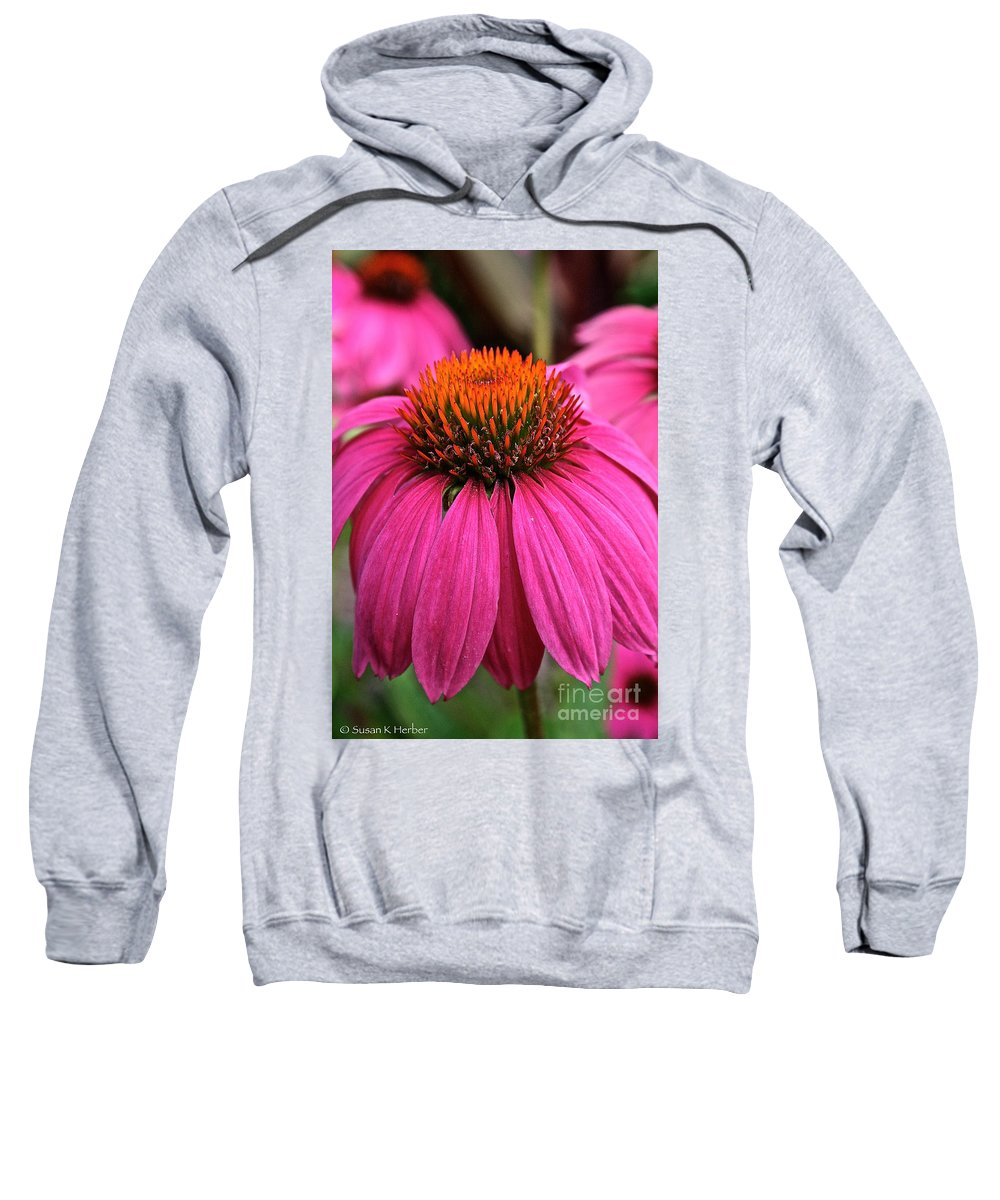 Plant Sweatshirt featuring the photograph Wild Berry Purple Cone Flower by Susan Herber