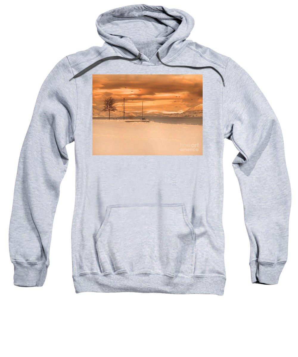 Lake Sweatshirt featuring the photograph Winter Flight by Tara Turner