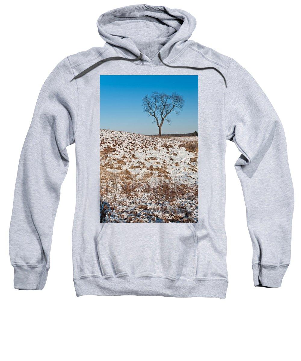 Nachusa Sweatshirt featuring the photograph Winter Tree Nachusa Grasslands by Steve Gadomski