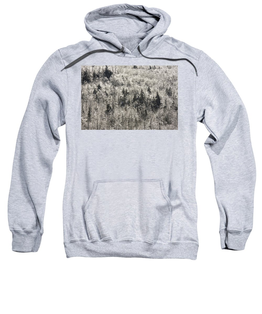 Frosty Sweatshirt featuring the photograph Winter Trees Covered In Ice by Keith Webber Jr