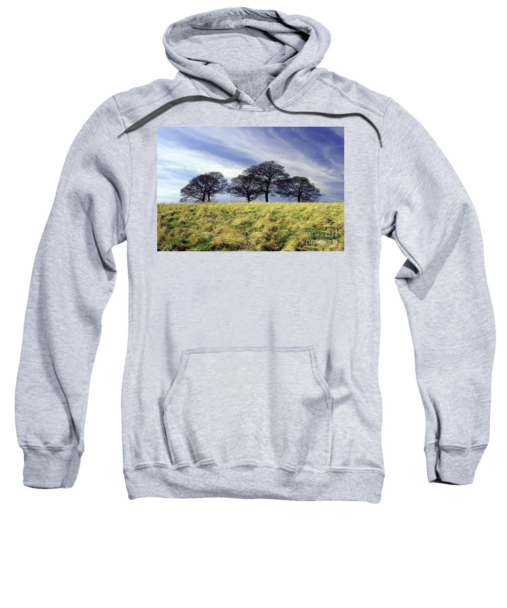 Trees Sweatshirt featuring the photograph Winter Trees by John Chatterley