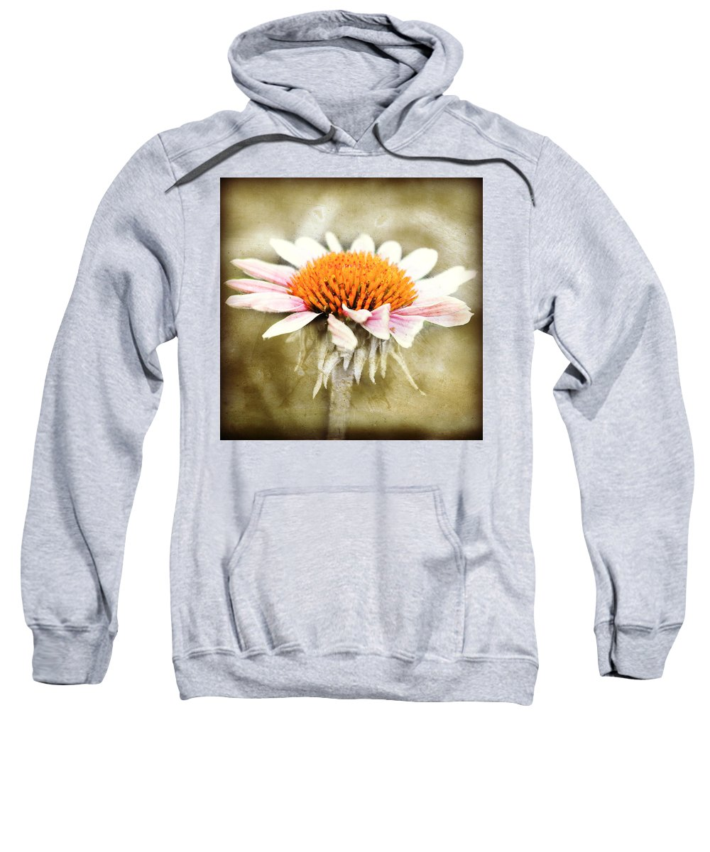 Flower Garden Sweatshirt featuring the photograph Young Petals by Julie Hamilton