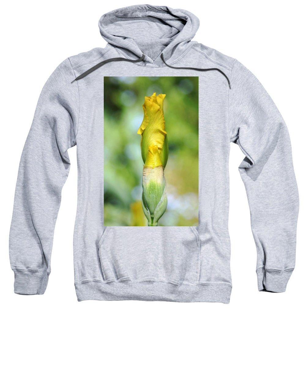 Iris Sweatshirt featuring the photograph Anticipation by Debbie Oppermann