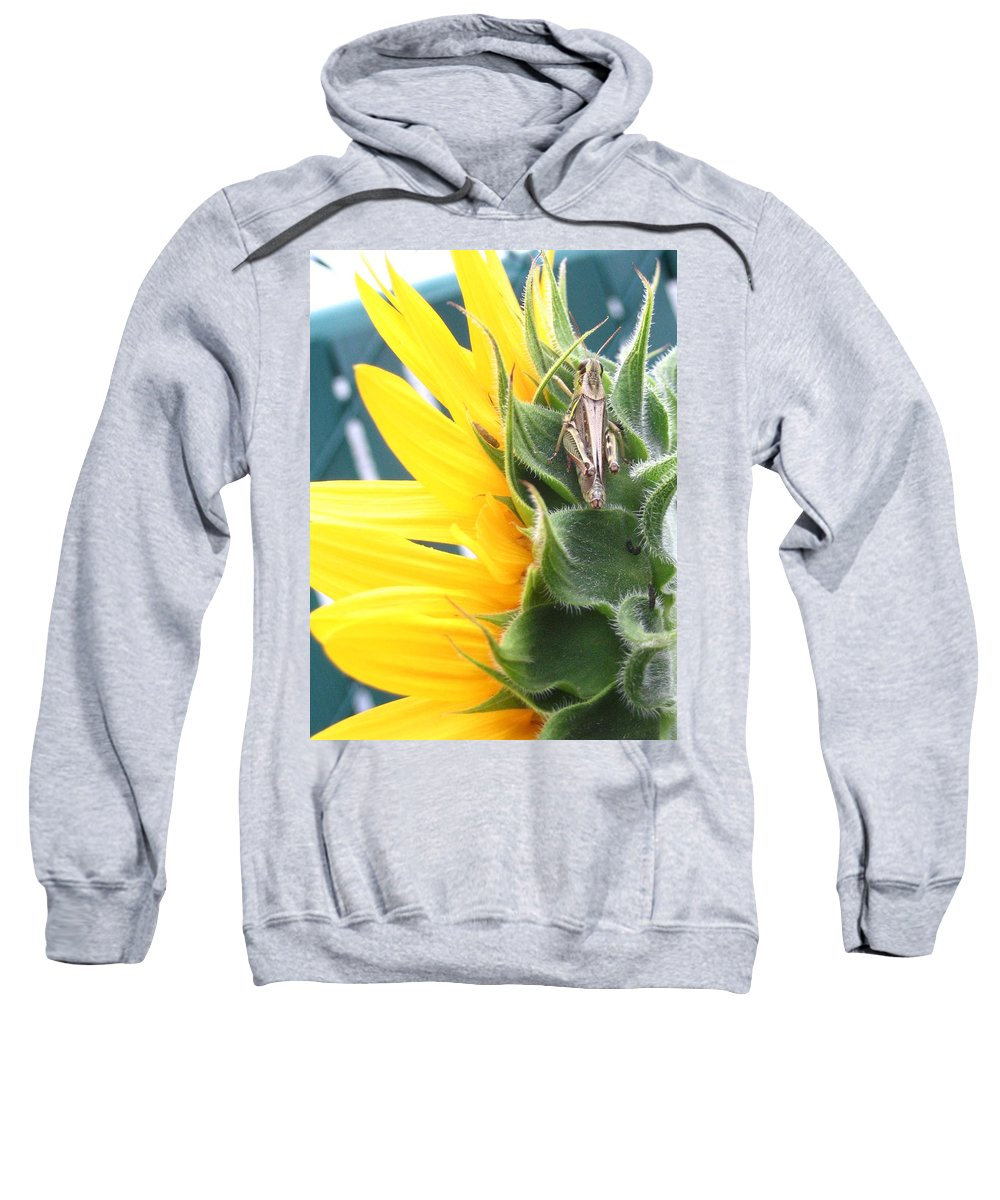 Sunflower Sweatshirt featuring the photograph ... Small Break by Line Gagne