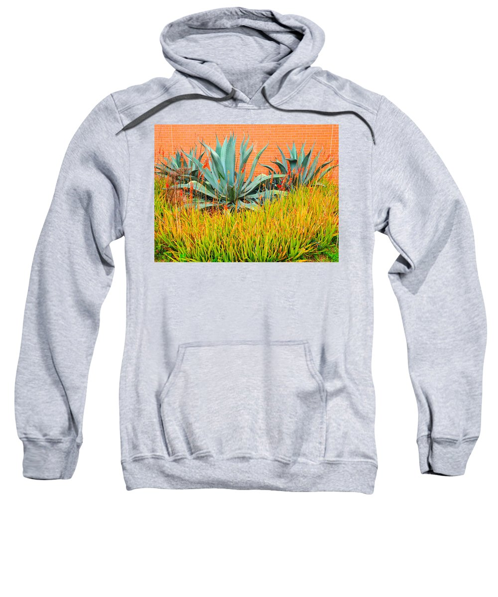 Agave Sweatshirt featuring the photograph Agave by Gary Richards