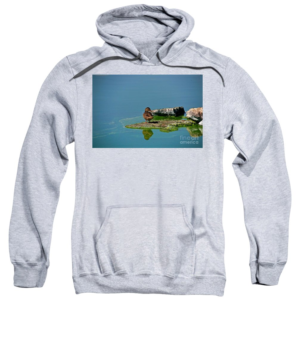 Duck Sweatshirt featuring the photograph Alone by Robert Pearson