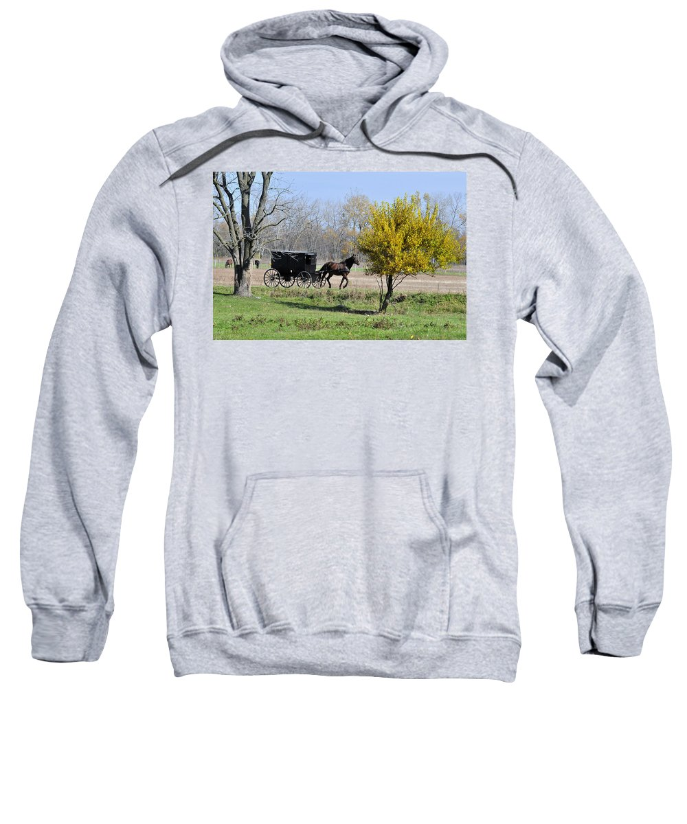 Amish Sweatshirt featuring the photograph Amish Buggy Late Fall by David Arment