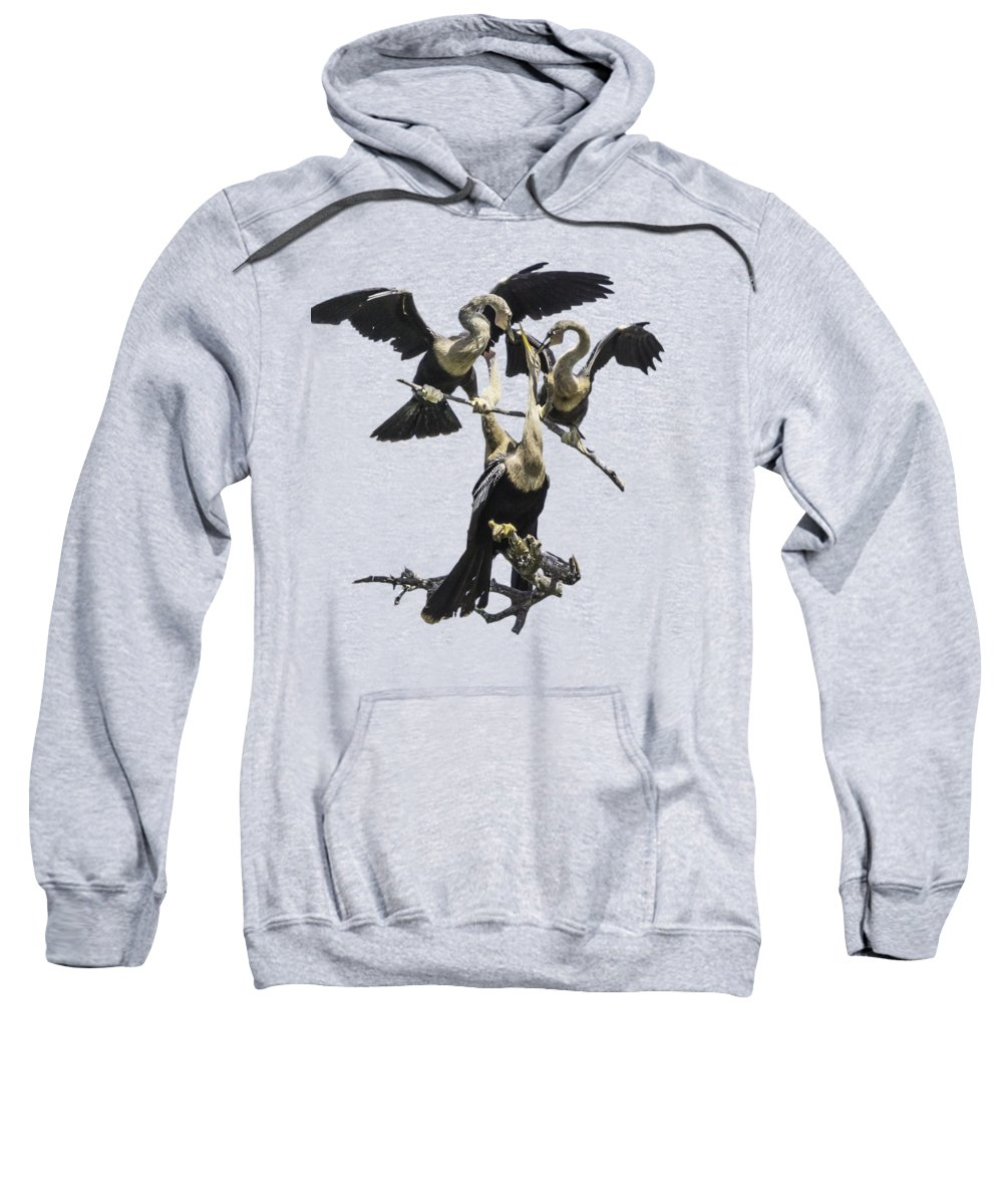 Anhinga Hooded Sweatshirts T-Shirts