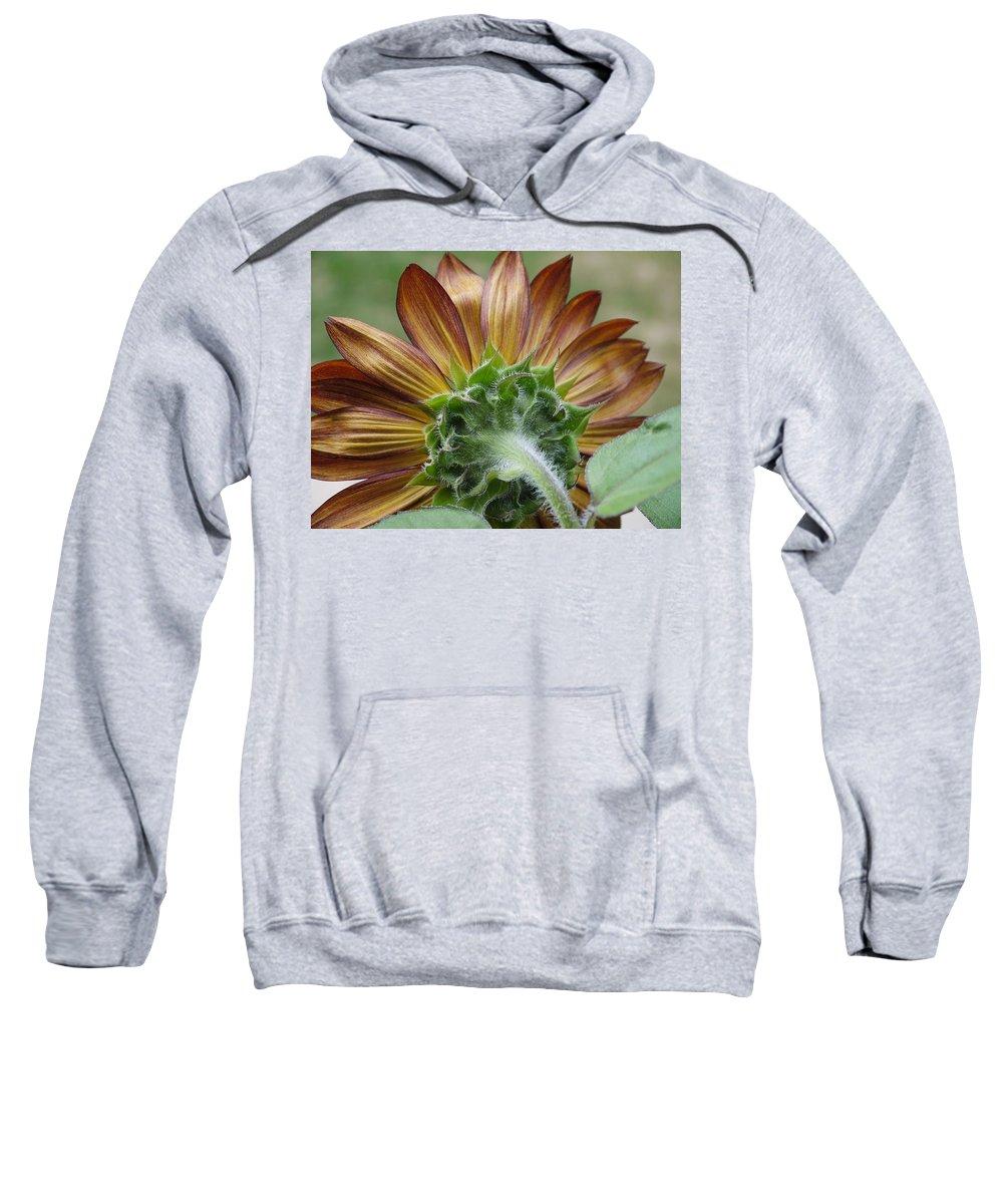 Sunflower Sweatshirt featuring the photograph Beautiful by Nancie DeMellia