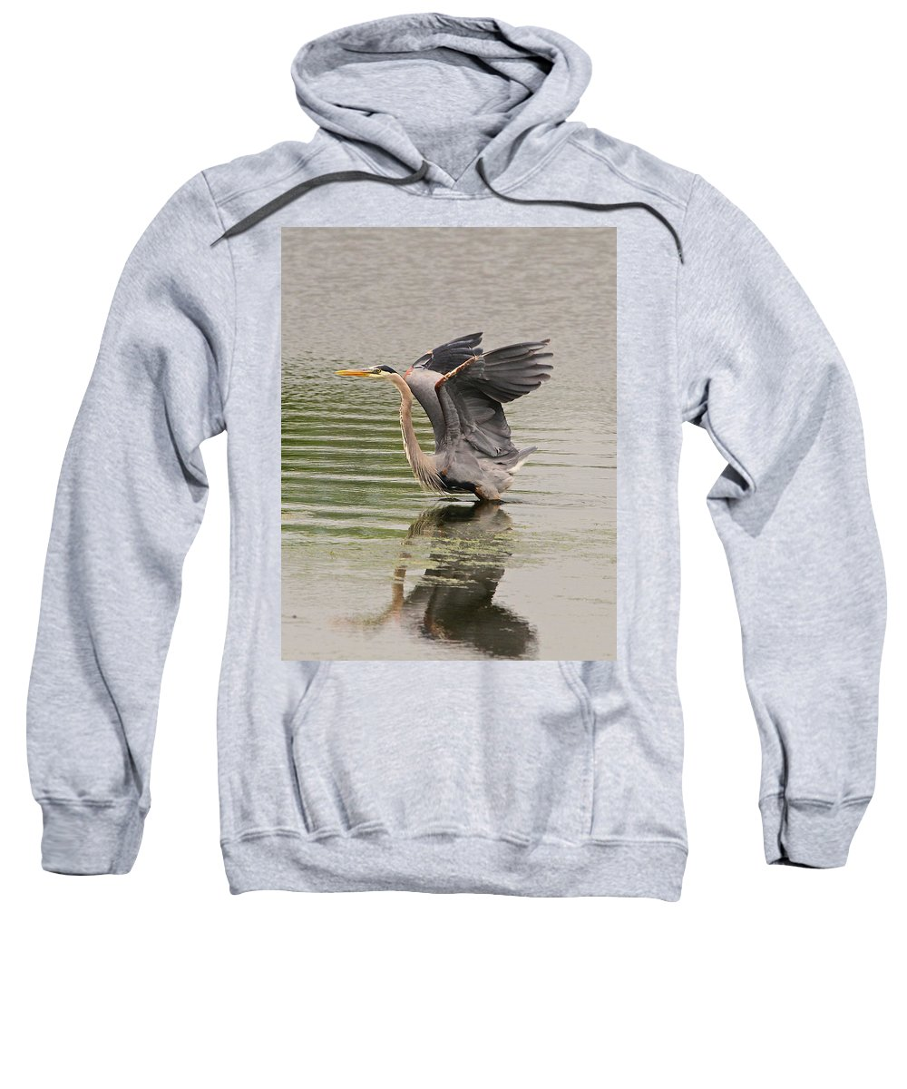 Blue Sweatshirt featuring the photograph Blue Heron by Robert Pearson