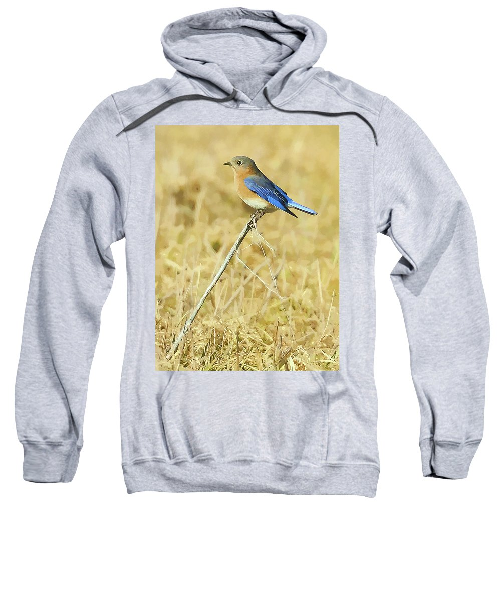 Bluebird Sweatshirt featuring the photograph Bluebird In February by William Jobes