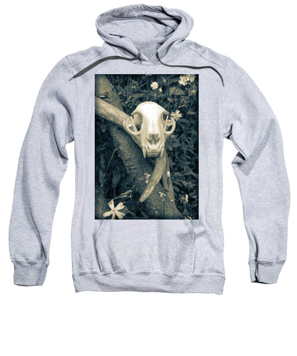 Art Sweatshirt featuring the photograph Bobcat Deer Antler by Ronda Broatch