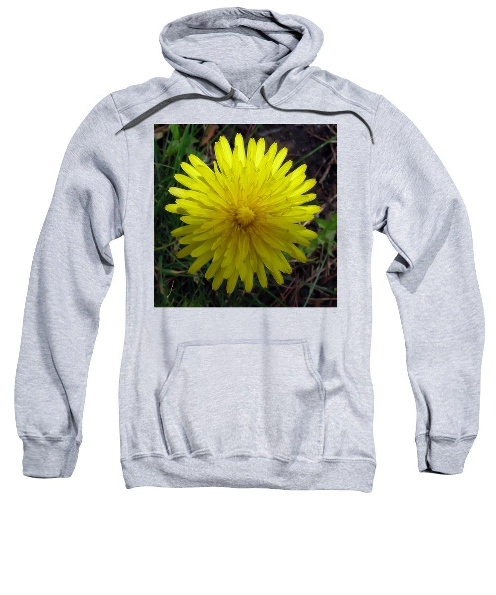 Dandelion Sweatshirt featuring the photograph Dandelion by Carol McGinn