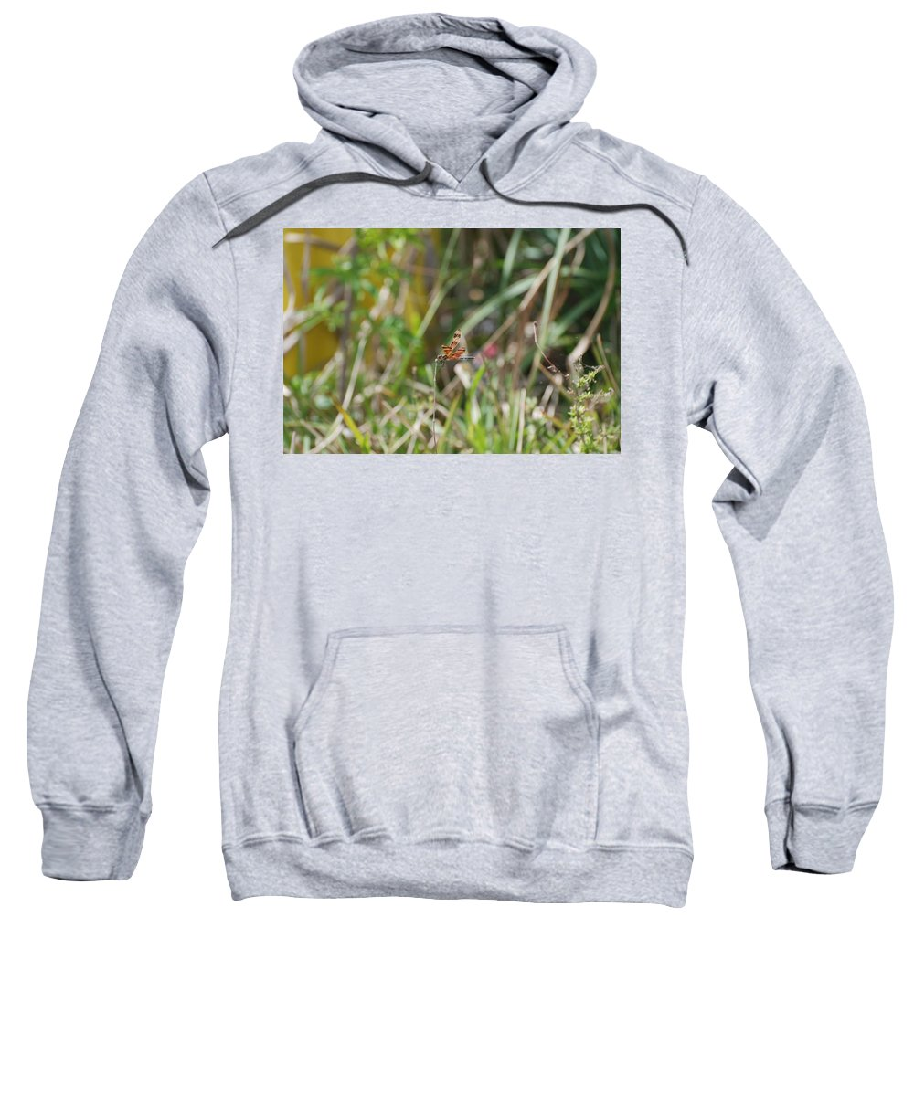 Nature Sweatshirt featuring the photograph Dragon Fly by Rob Hans