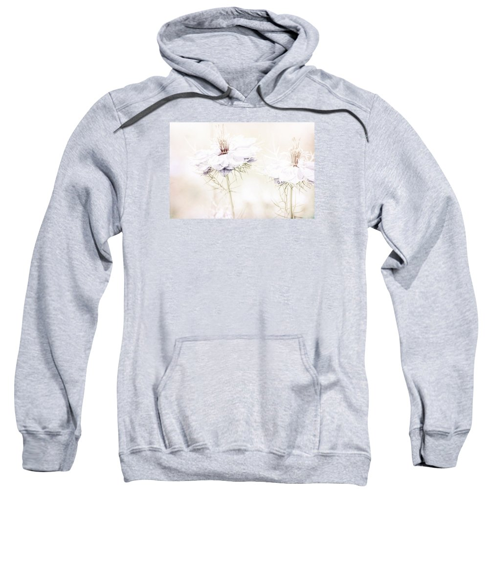 Dreamy Sweatshirt featuring the photograph Dreamy Garden by Bonnie Bruno