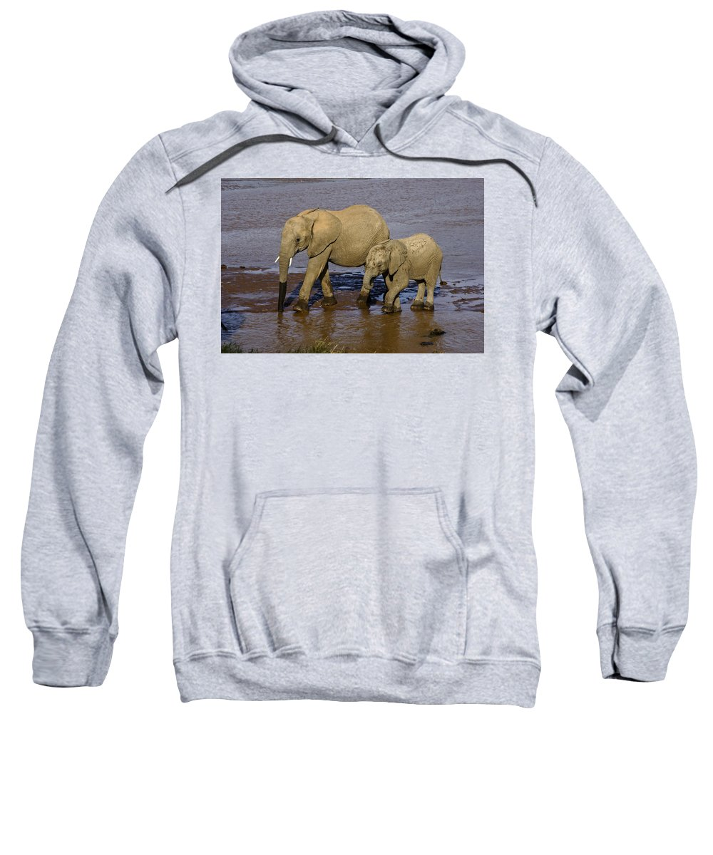 Africa Sweatshirt featuring the photograph Elephant Crossing by Michele Burgess