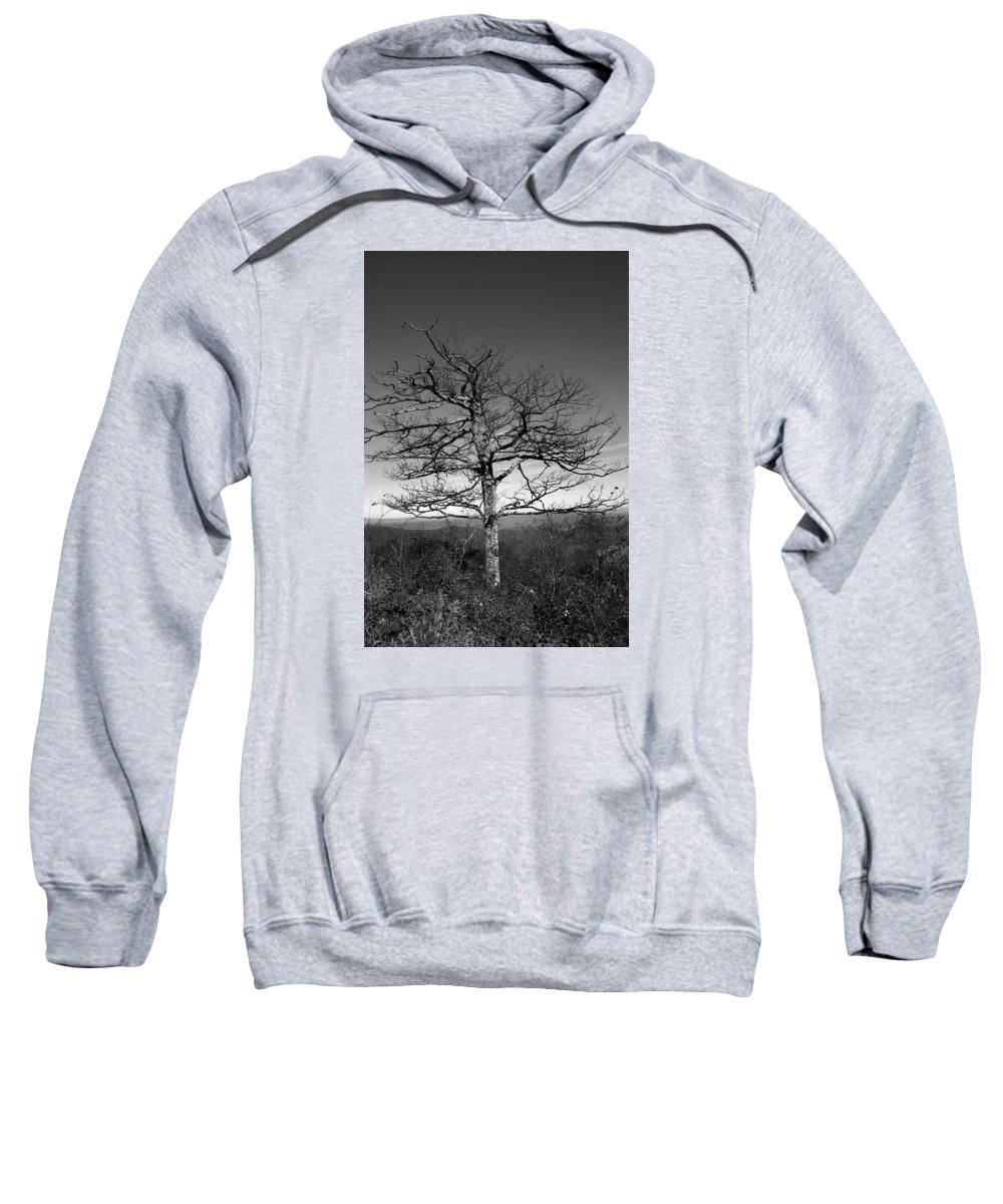 Scenic Tours Sweatshirt featuring the photograph Embrace The Sky by Skip Willits