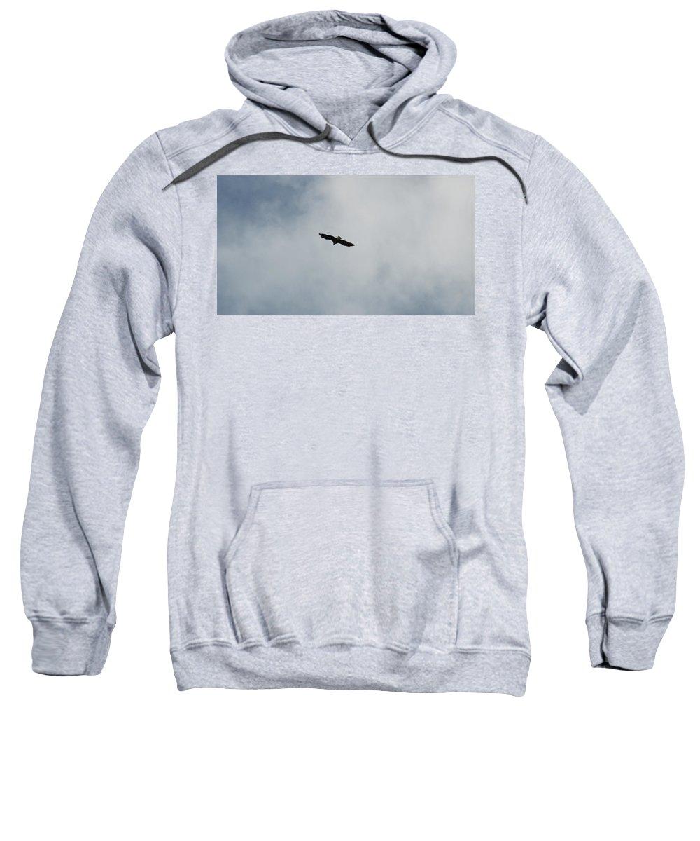 Bald Eagle Sweatshirt featuring the photograph Flight by Linda Kerkau