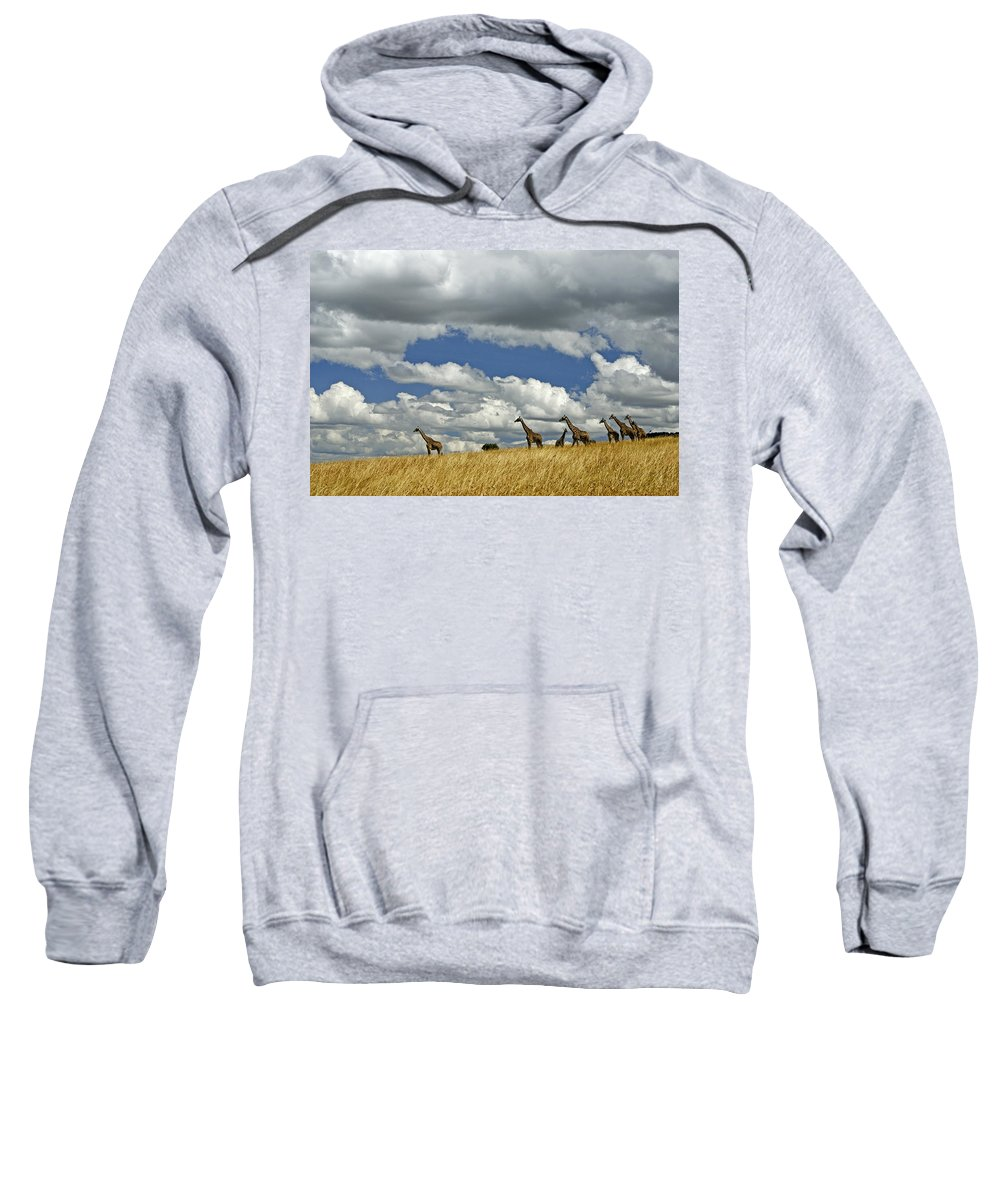 Africa Sweatshirt featuring the photograph Giraffes On The Horizon by Michele Burgess