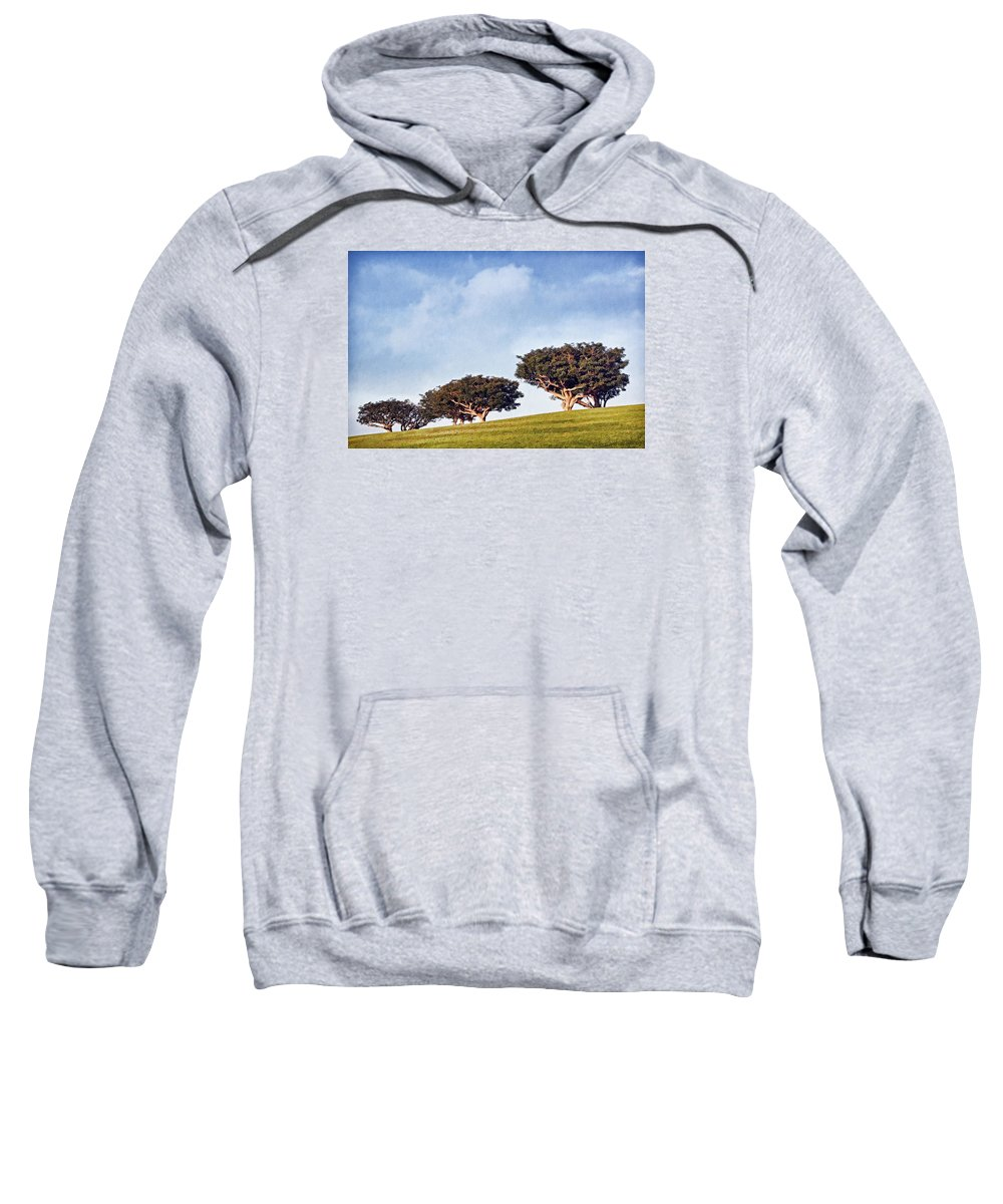 Trees Sweatshirt featuring the photograph Glorious Morning Pnt by Theo O'Connor