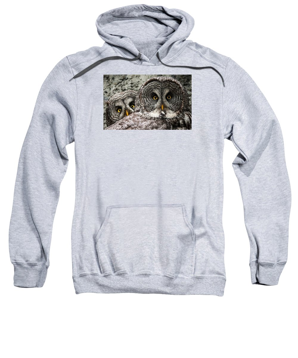 Great Grey Owl Sweatshirt featuring the photograph Great Grey Wake Up by J and j Imagery