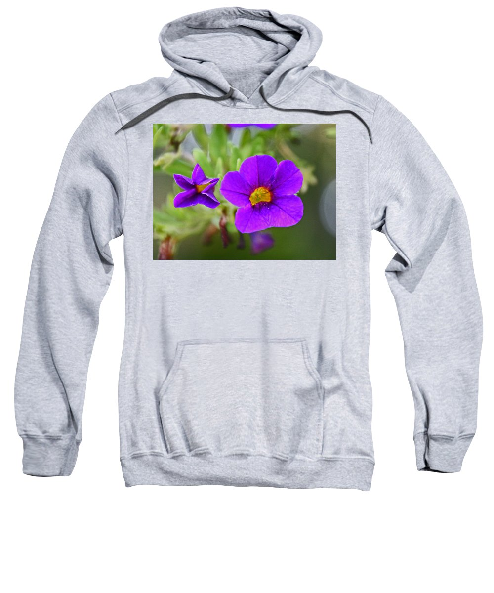 Flowers Sweatshirt featuring the photograph In The Garden by David Campbell