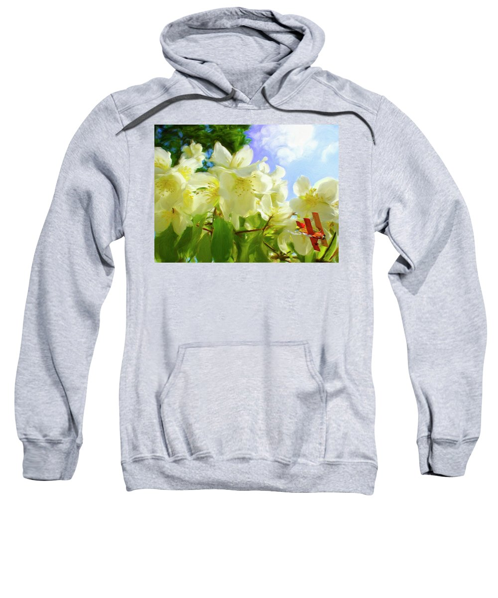 Airplane Sweatshirt featuring the digital art Jasmine Fly-by by Snake Jagger