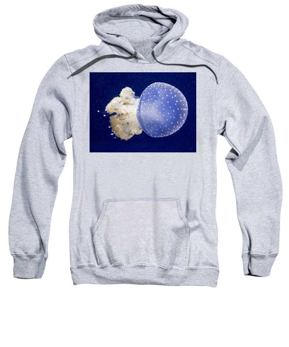 7d Mark Ii Sweatshirt featuring the photograph Jellyfish by Mark Chandler