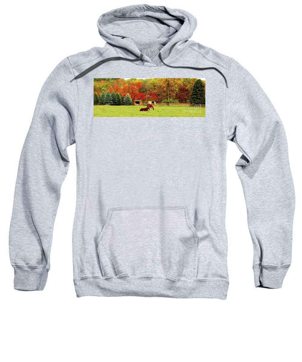 Horse Sweatshirt featuring the photograph Lazy Autumn Day by Lori Tambakis