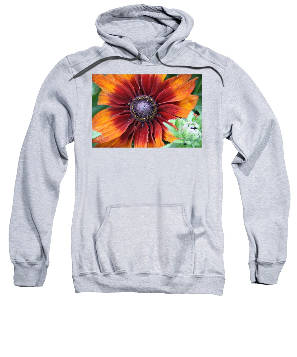 Sunflower Sweatshirt featuring the photograph Little Sunshine by Christiane Schulze Art And Photography