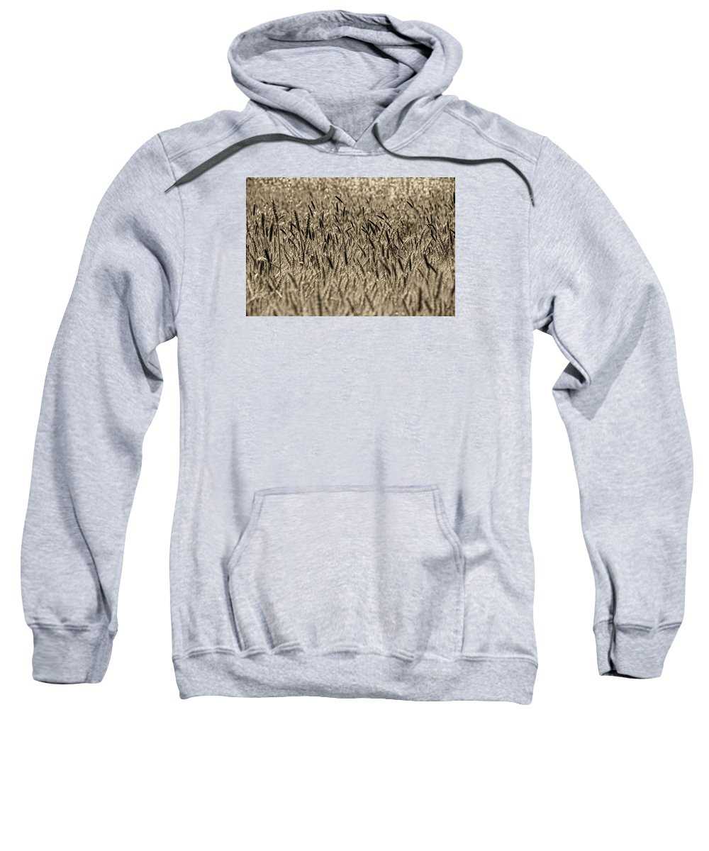Sweatshirt featuring the photograph Harvest Time by Deb Cohen