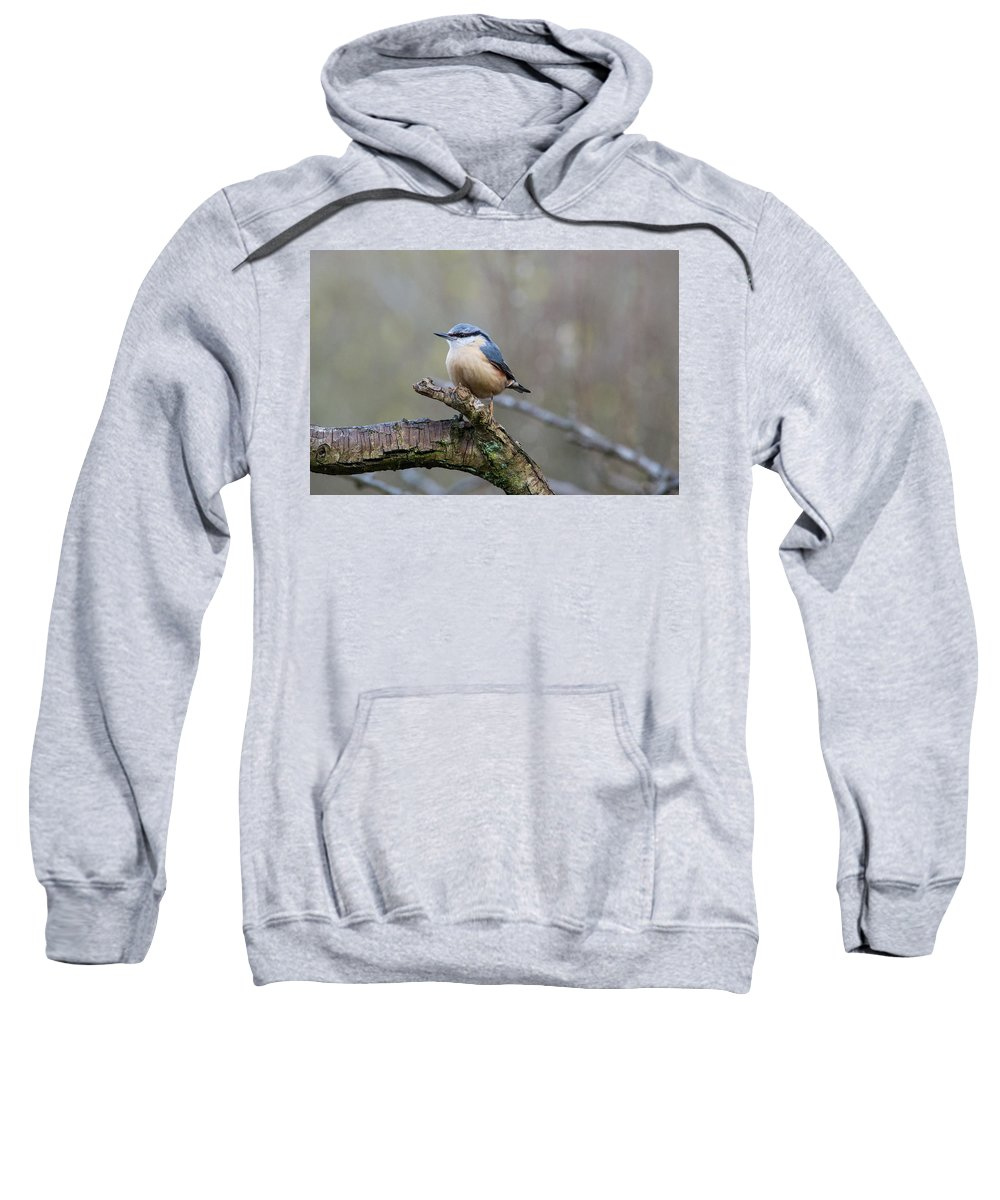 Nuthatch Sweatshirt featuring the photograph Nuthatch by Stephen Jenkins