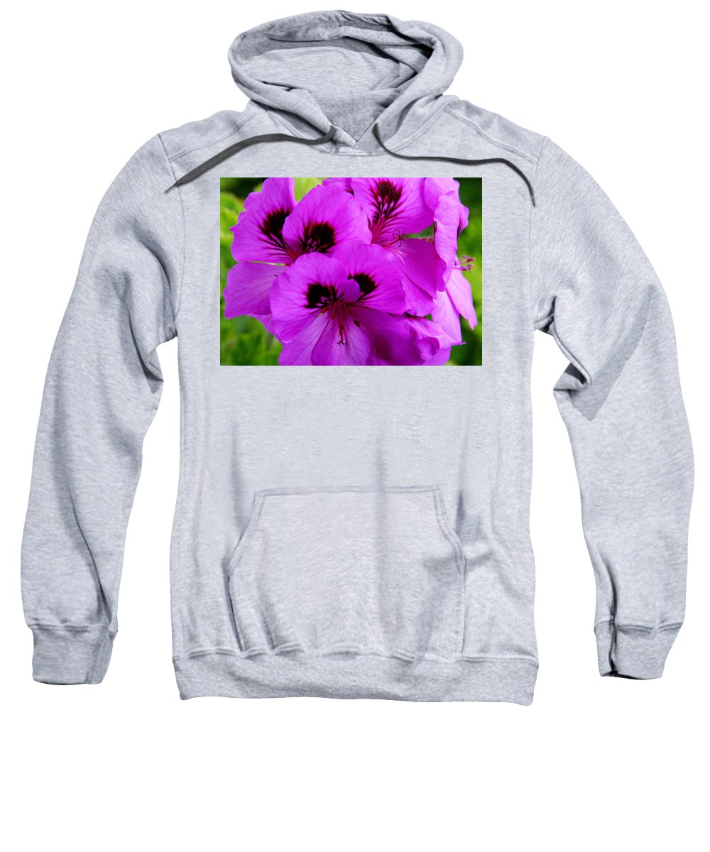 Purple Flowers Sweatshirt featuring the photograph Purple Flowers by Anthony Jones