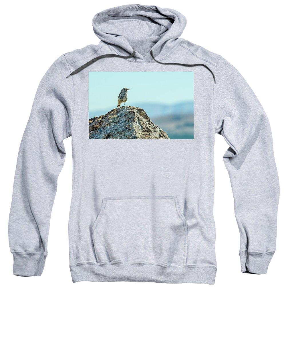 Rock Wren Sweatshirt featuring the photograph Rock Wren 2 by Rick Mosher