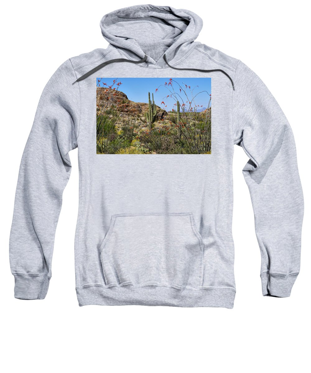 Landscape Sweatshirt featuring the photograph Saguaro National Park East Scene Iv by Kenneth Roberts