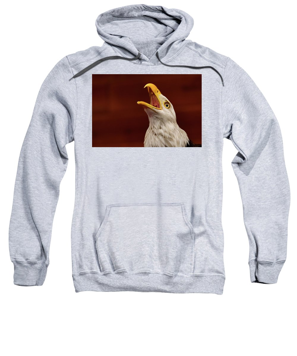 Eagles Sweatshirt featuring the photograph Screaming Eagle by Mark Madion