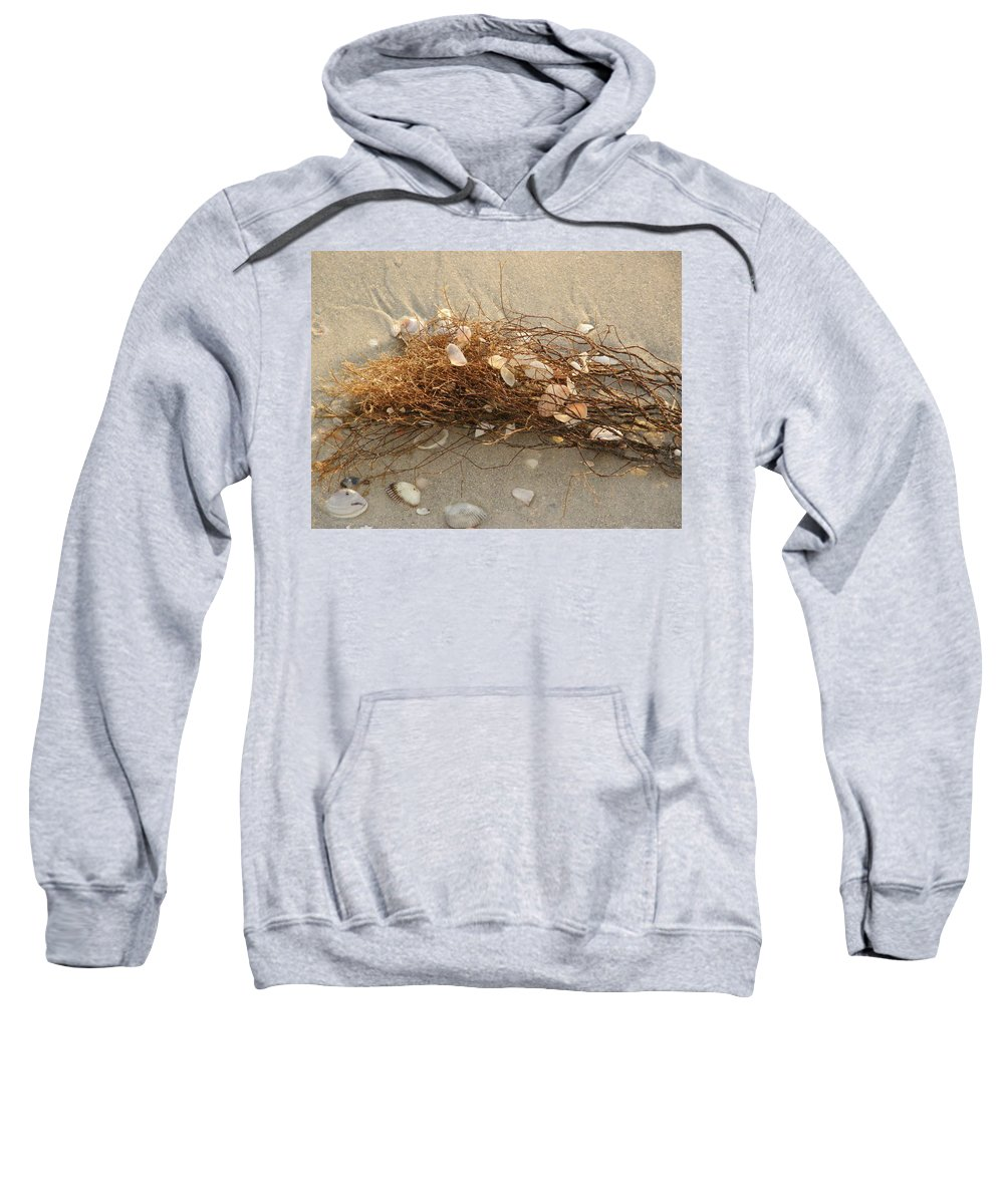 Seaweed Sweatshirt featuring the photograph Shells In Seaweed by Alice Markham